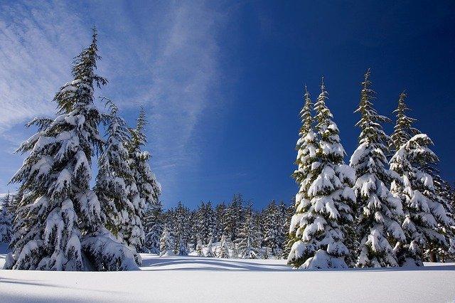 snow-1902052_640